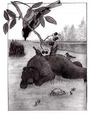 bearinsideimage001