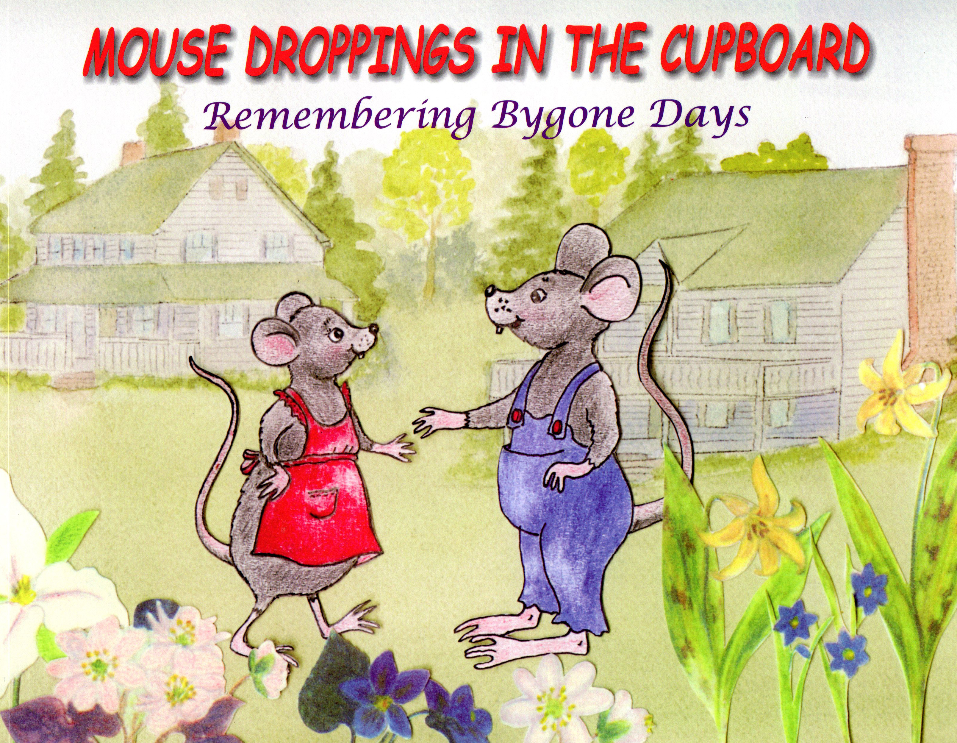 mousedroppings001